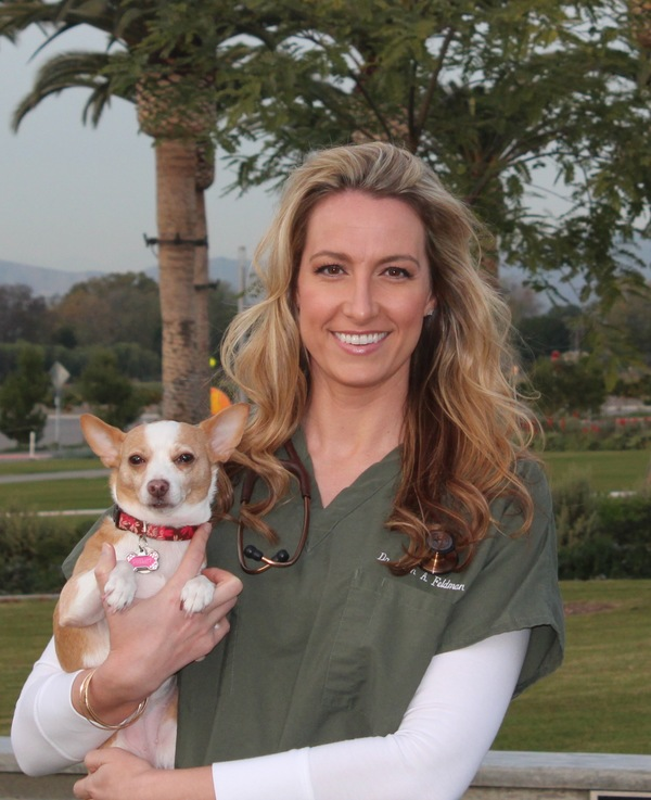 In home veterinary hospice and euthanasia - Irvine, CA