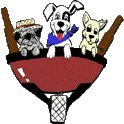 Dogs On The Farm & Cats Too! - Atlantic Highlands, NJ
