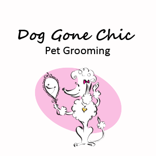 Grooming Packages - Camden, NC