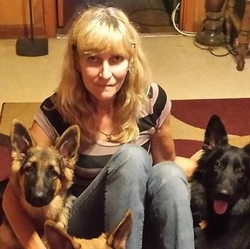 Great Companion Dog Training LLC - Wittmann, AZ
