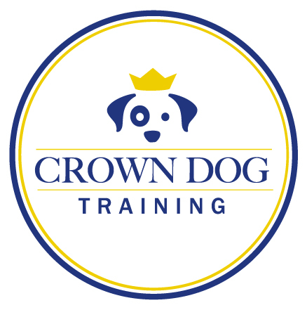 Private Dog Training & Group Classes - Miami, FL