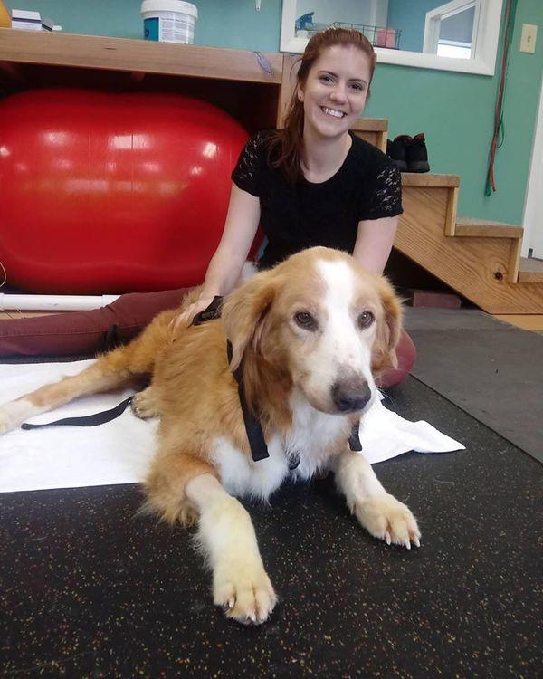 Aiken Pet Fitness & Rehabilitation - Aiken, SC