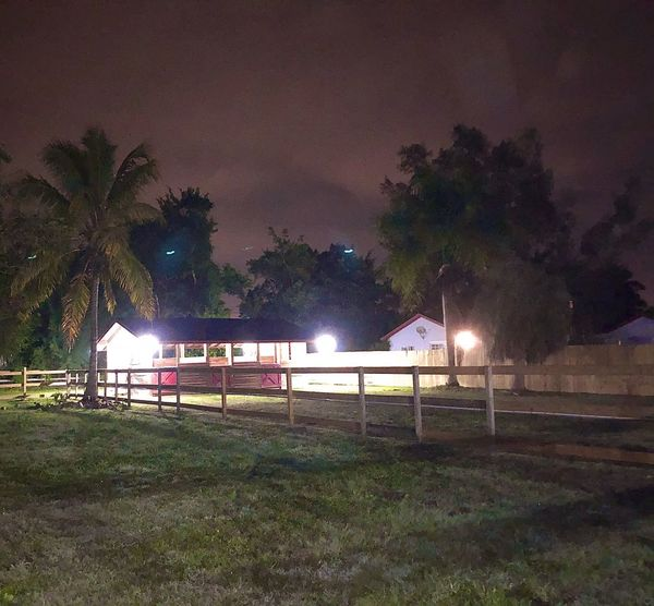JOJO'S Ranch - Homestead, FL