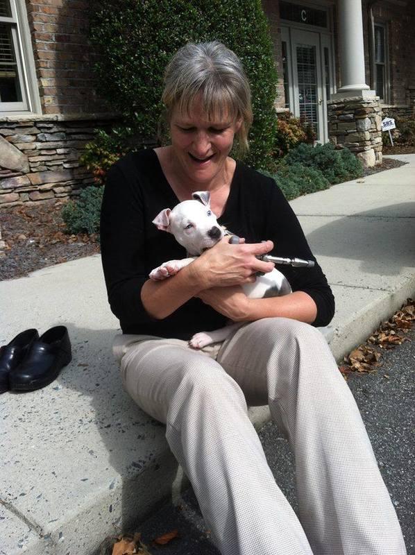 Dr. Kathleen Nazar Animal Chiropractor - Greensboro, NC