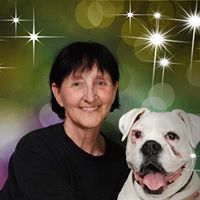 Wanda Woof Dog Training - Little Elm, TX