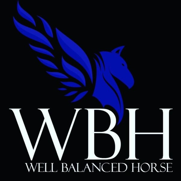Well Balanced Horse - Ocala, FL