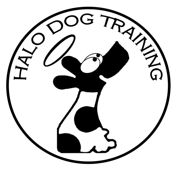 Halo Dog Training  - Eugene, OR