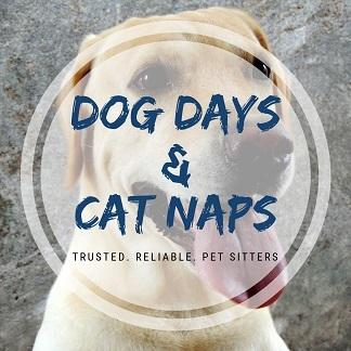 Dog Days & Cat Naps - Jacksonville, FL