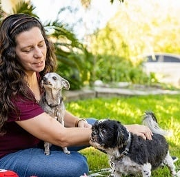 K-9 Companion Pet Services - Houston, TX