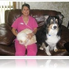 Bennett Road Animal Clinic, Inc. - Okemos, MI