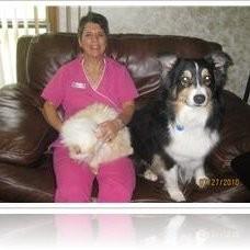Bennett Road Animal Clinic, Inc. - Okemos, MI