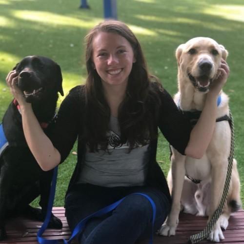 Canines and More, LLC - Alafaya, FL