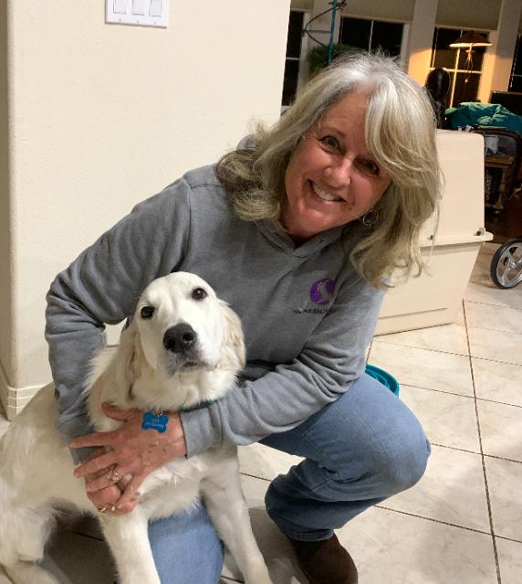 Synergy Dog Training & Behavior Solutions - Niwot, CO