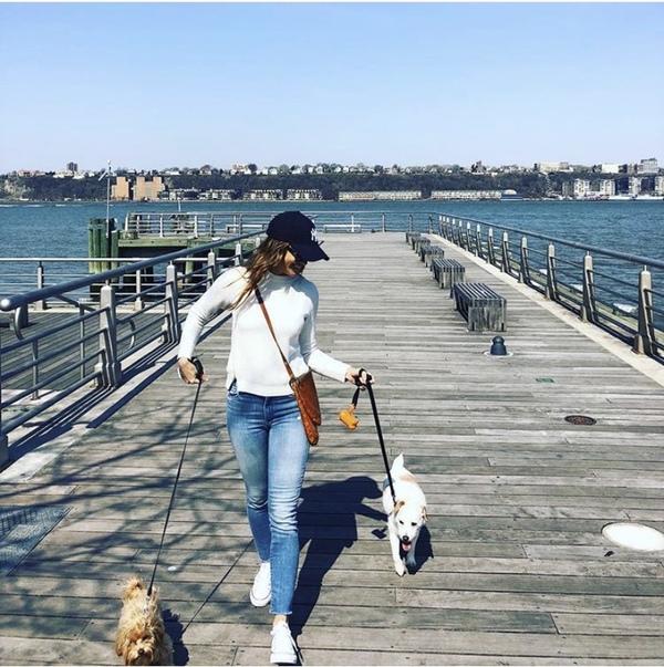 Fido & Friends Dog Walking & Pet Sitting  - New York, NY