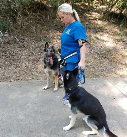Graced Kennels - Daycare, Boarding, & Training - Augusta, GA