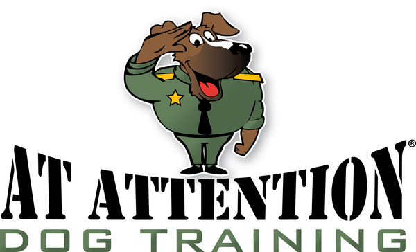 At Attention Dog Training - King of Prussia, PA