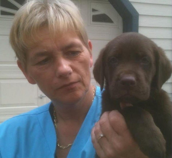 Steph's Cute Critter Cuts and Sweet Puppy Suites.Inc  - Deltona, FL