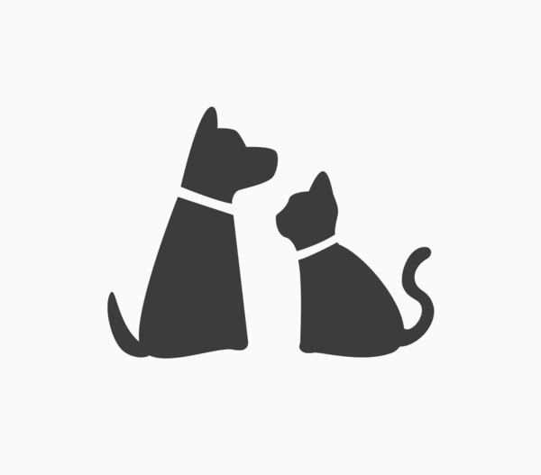 Dog Walking, Pet Sitting, and House Sitting - Chicago, IL