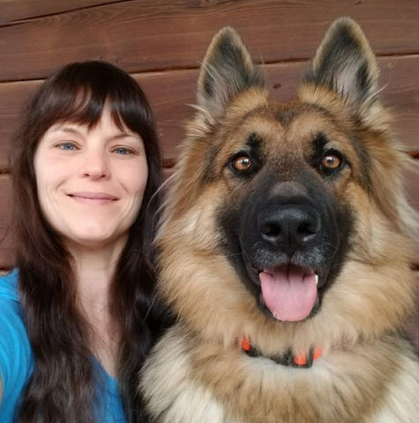 Lingo Dog Training - Fairfield, IA