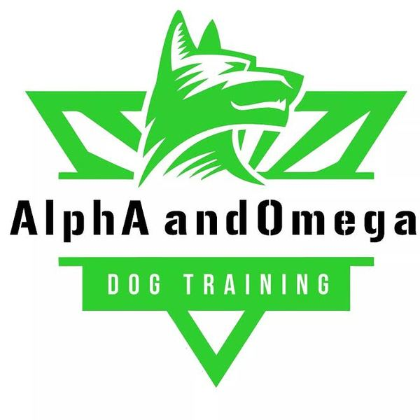 AlphA and Omega Dog Training - Fort Lauderdale, FL